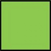 Farbiges Papier grün 160g/qm DIN A4
